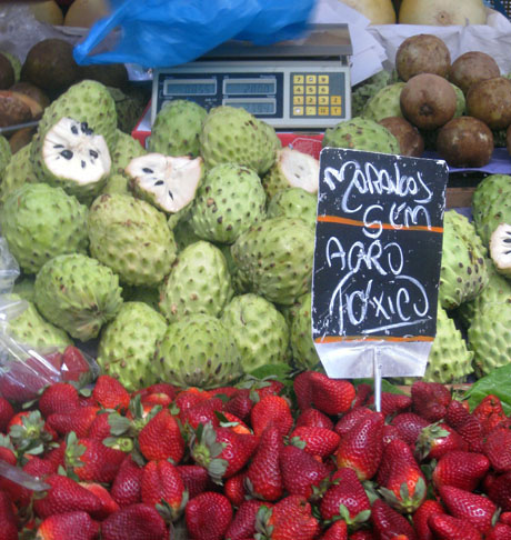 Fruita de conde, related to cherimoya and soursop, creamy on the inside.