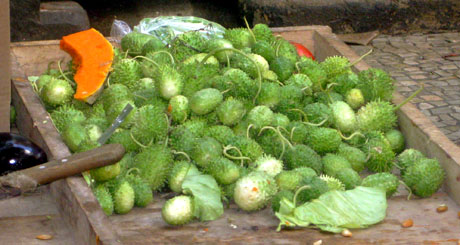 Maxixe, a spiny cucumber that's crunchy, refreshing and seedless.