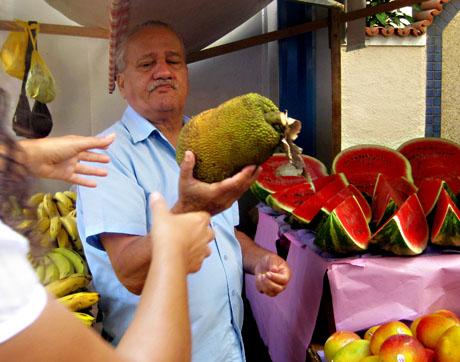 The perfect pantry brazil food copacabana farmers market recipe jackfruit forumfinder Image collections