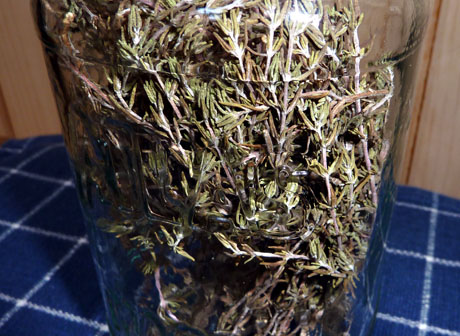 Thyme from my garden