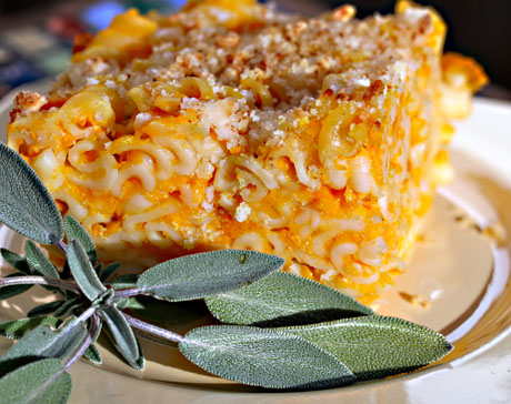 Butternutt squash macaroni and cheese