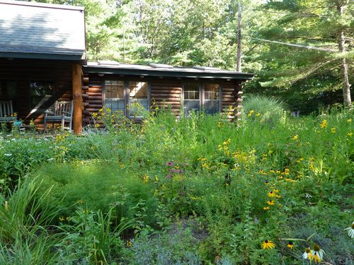 The cottage garden at The Log House.