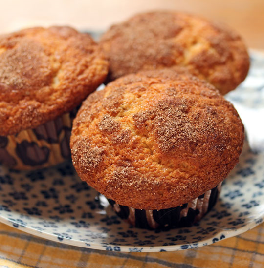 Quick and easy sugar crusty banana muffins [ThePerfectPantry.com].