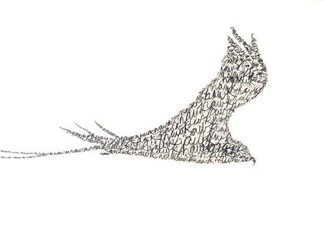 TYPEPAD Hawk