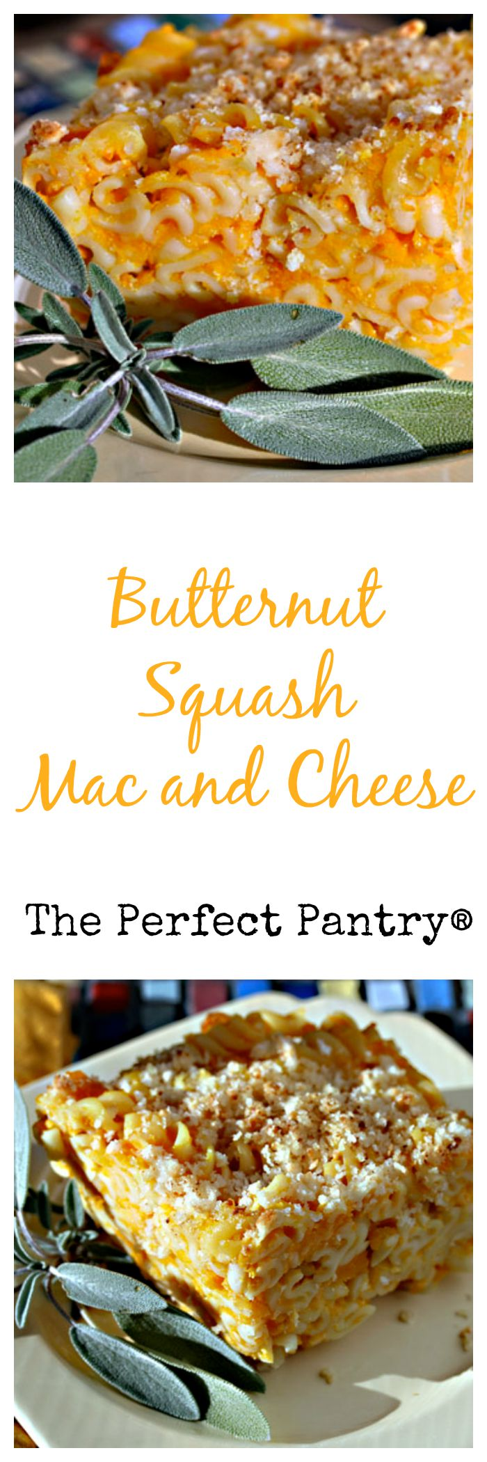 Butternut squash mac and cheese: the kids will love it!