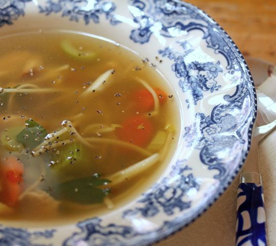 Turkey noodle soup, so you can feed your cold.