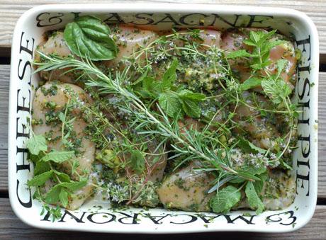 Chicken marinating in fresh herbs