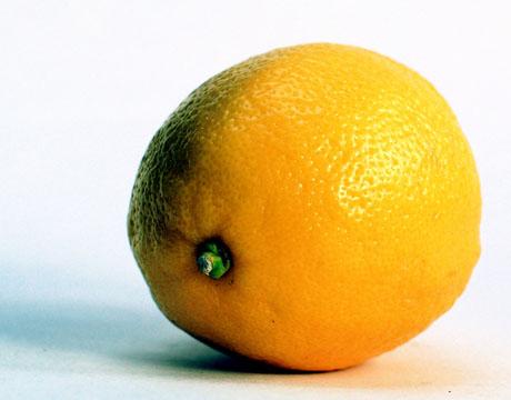 http://ninecooks.typepad.com/photos/uncategorized/2008/01/07/lemon.jpg